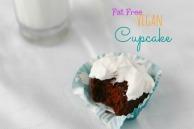 Fat Free Chocolate Cupcakes